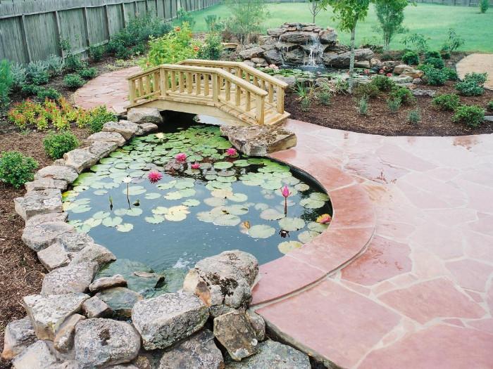 Fish Ponds 8